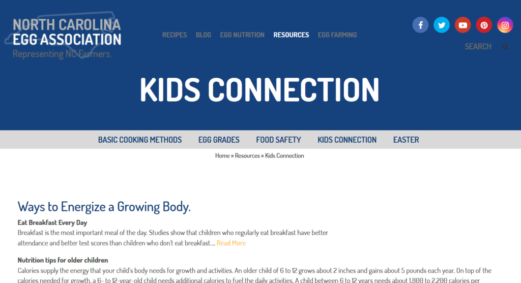 Screen shot of the Kids Connection webpage