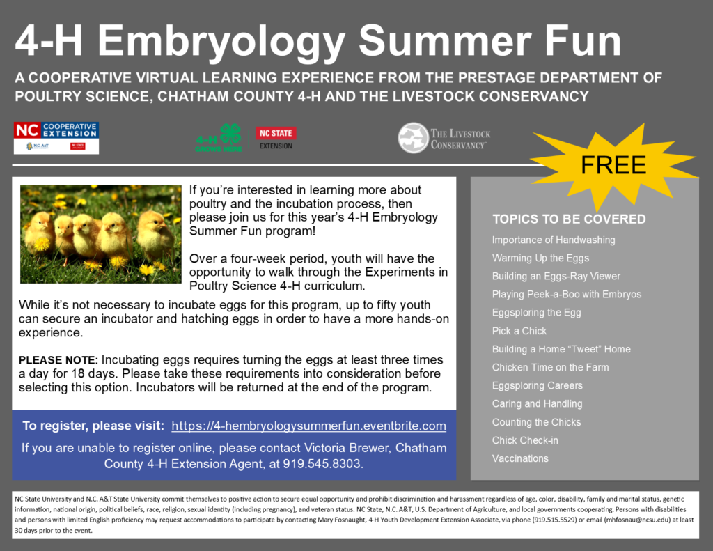 4-H Embryology Summer Fun graphic flyer